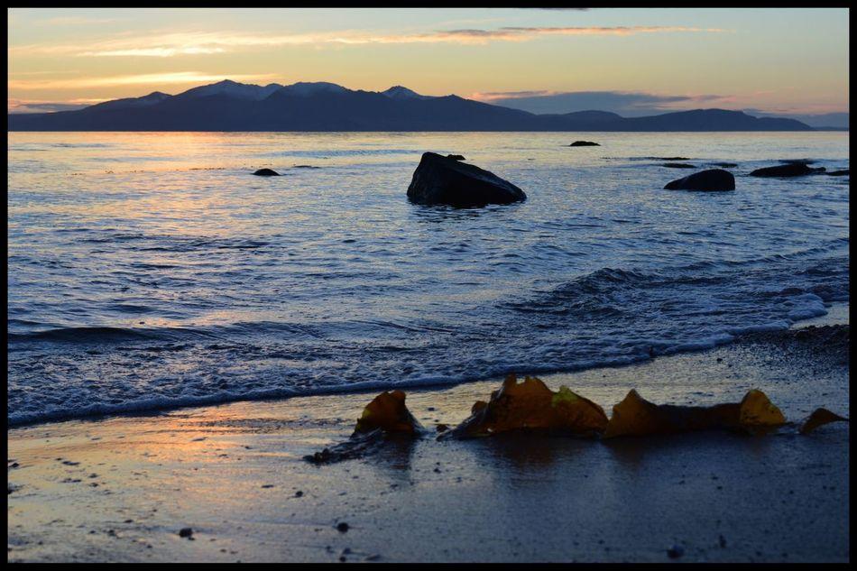 Seaweed on Ardrossan Beach towards Isle Of Arran  Sea Tranquility Nature Tranquil Scene Sky Water Scenics Beauty In Nature Sunset No People Sand Horizon Over Water Outdoors Mountain Day EyeEm EyeEmBestPics Eyeemphotography EyeEm Best Shots Eyemphotography Eye4photography