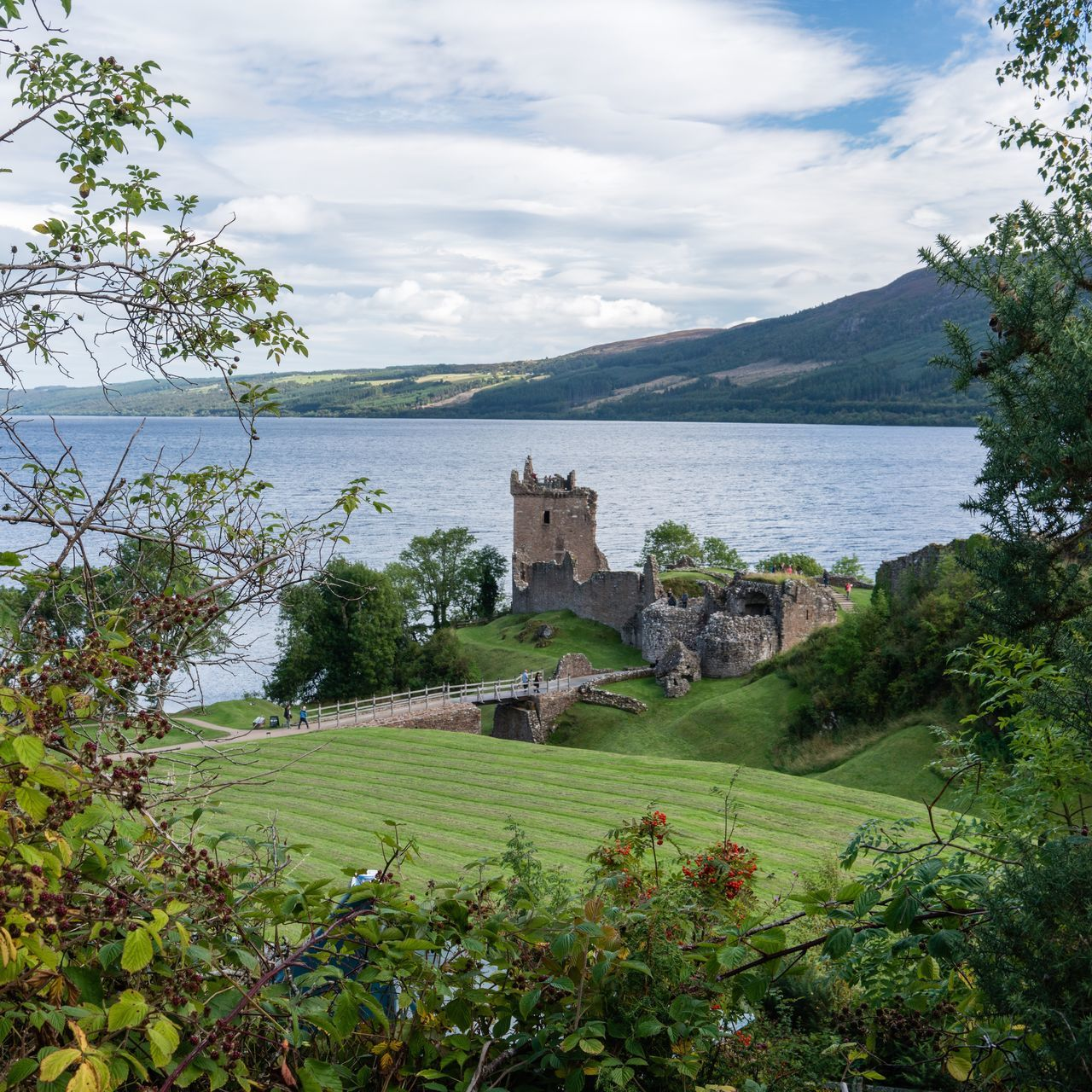 Tree Sky Travel Destinations Architecture Cultures Scenics No People Outdoors Water Nature Building Exterior Cloud - Sky Beauty In Nature Day Castle Lochness Loch  Lake Natural Frame UrquhartCastle Scotland Scottish Highlands Landscape