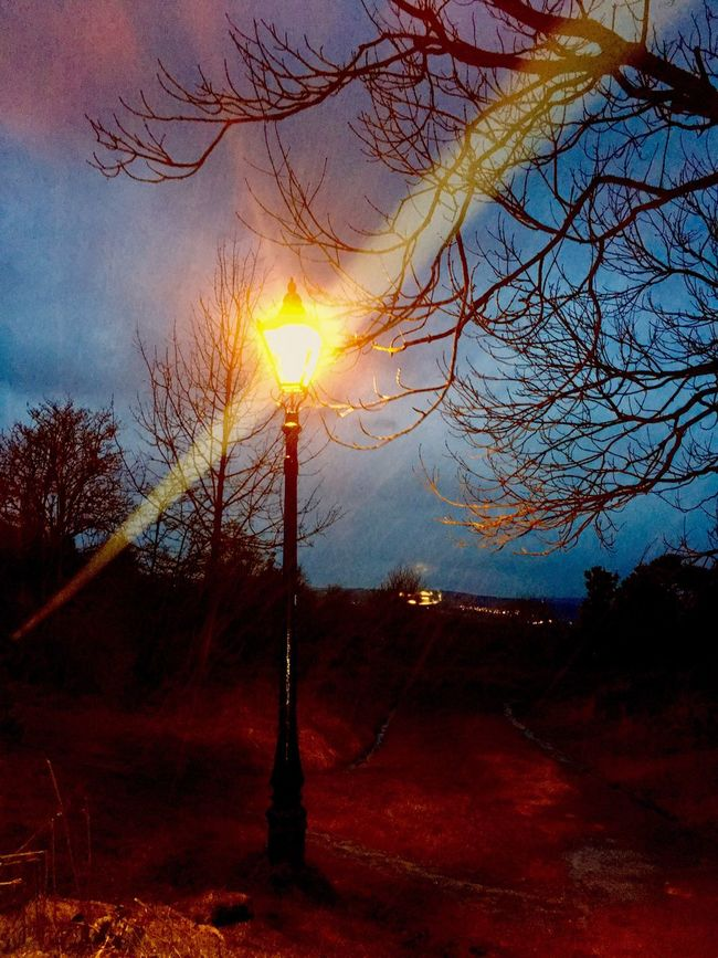 Early evening on Ilkley Moor in the rain. Sunset Tree Sky Beauty In Nature Bare Tree Tranquility No People Nature Sun Scenics Outdoors Tranquil Scene Branch Day Silhouette Landscape Yorkshire Ilkley Moor Ilkley Tarn Orange Light Lamppost