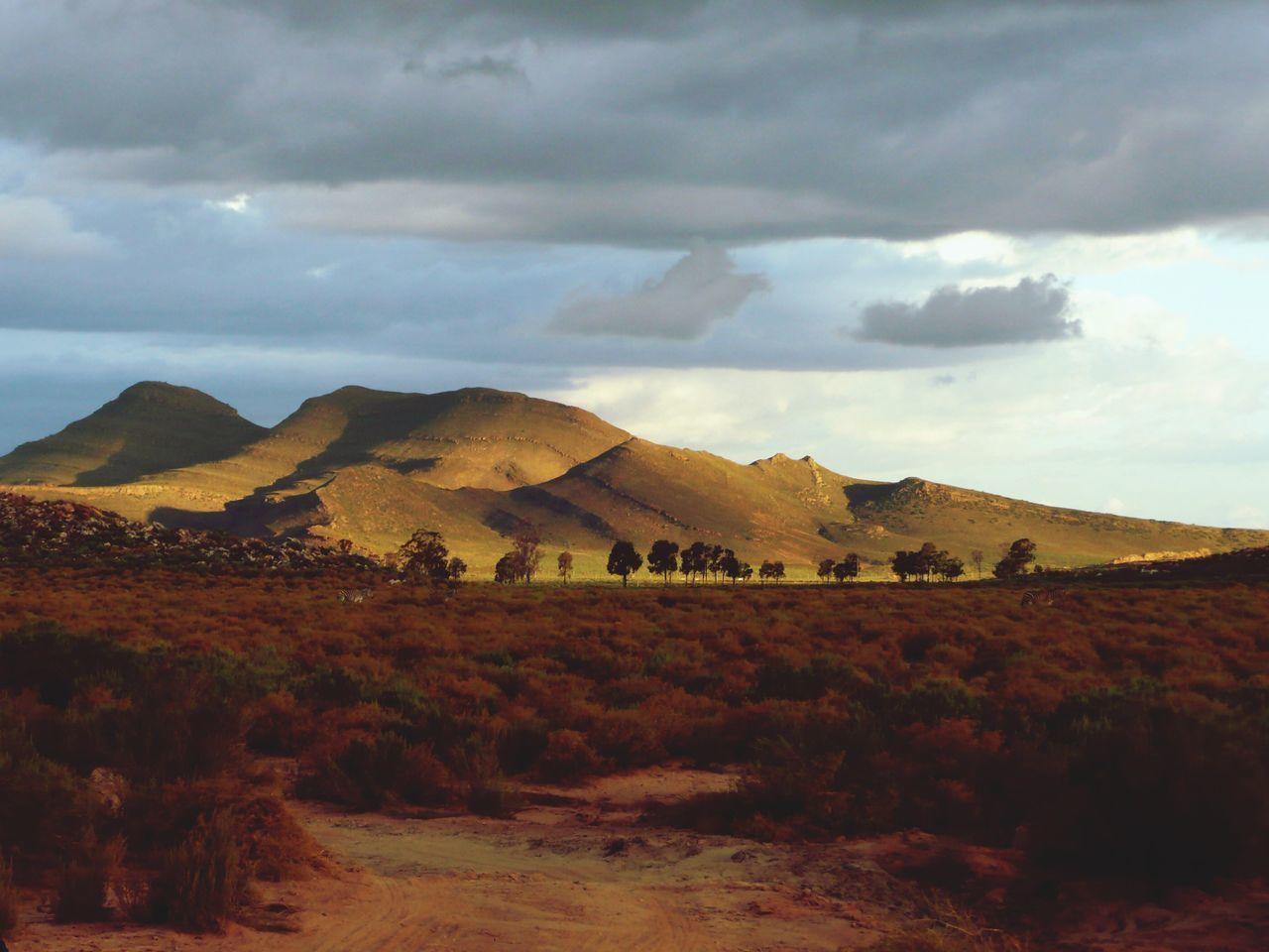 Beautiful stock photos of afrika, landscape, tranquil scene, scenics, tranquility