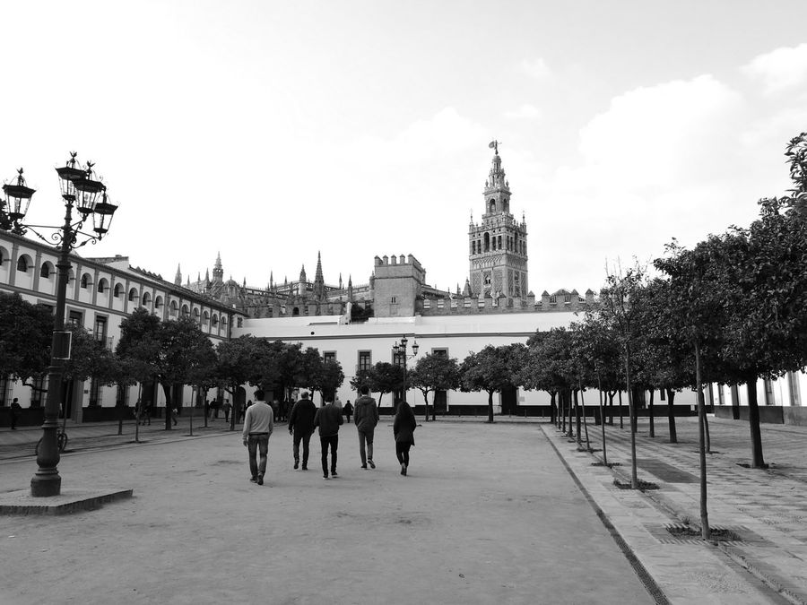 Monochrome Sevilla Giralda Buildings EyeEmNewHere