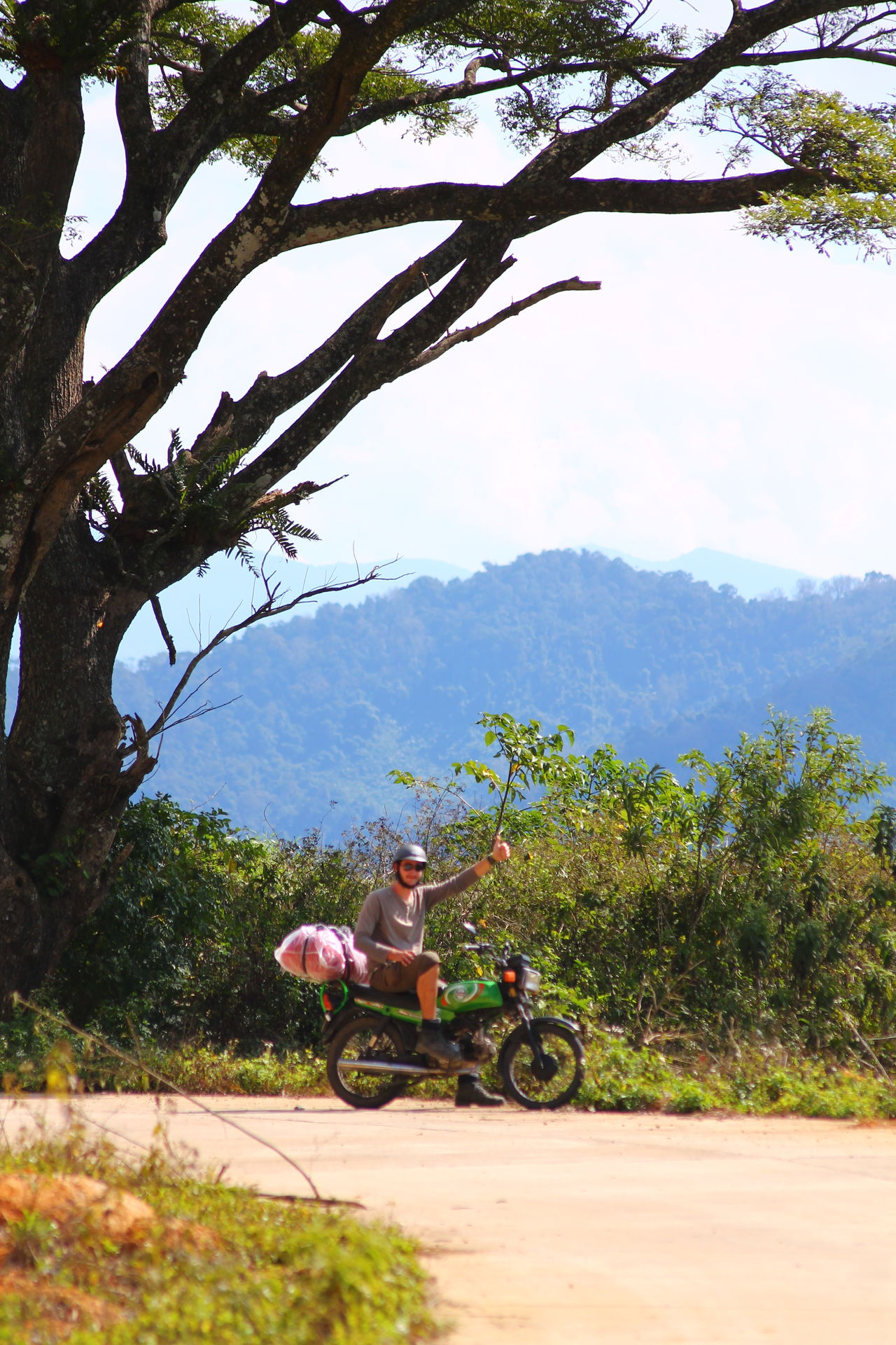 Tree Sitting One Person Full Length Bicycle Vacations Nature Adventure Adult Outdoors Motorbike Motorbike Touring Purist In Photography Purist No Edit No Filter Travel Nature People Photography Travel Photography The Way Forward Vietnam Heineken Logo Human Interaction State Of Mind  Solitude Emotions