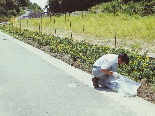 Japan Kashirajima 頭島 Summer Summerdays  People Photography Flowers