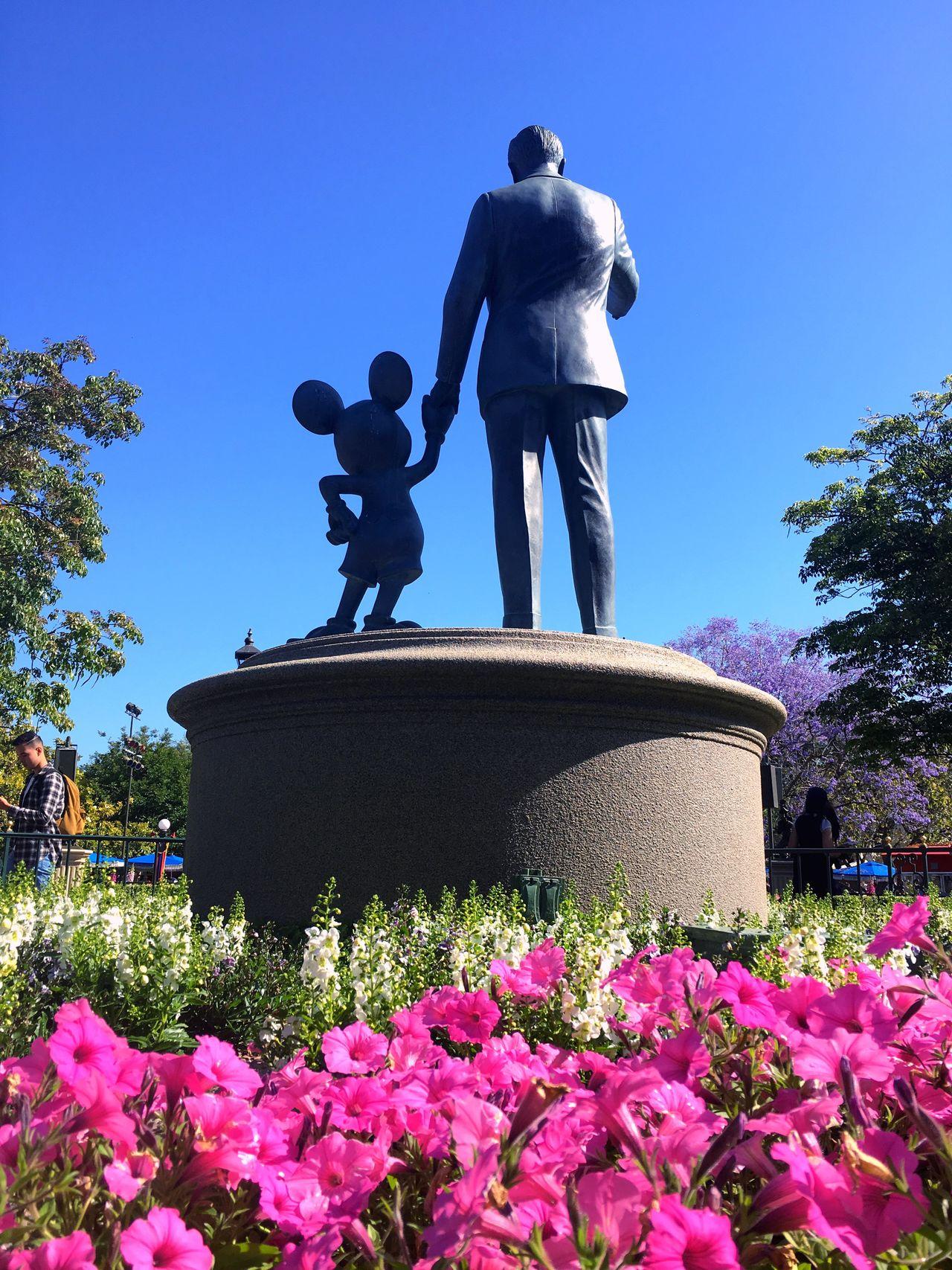 Hold my hand to tomorrow land Disney Disneyland California Mickey Mouse Flowers,Plants & Garden Blue Sky Happiestplaceonearth Waltdisney Mainstreet