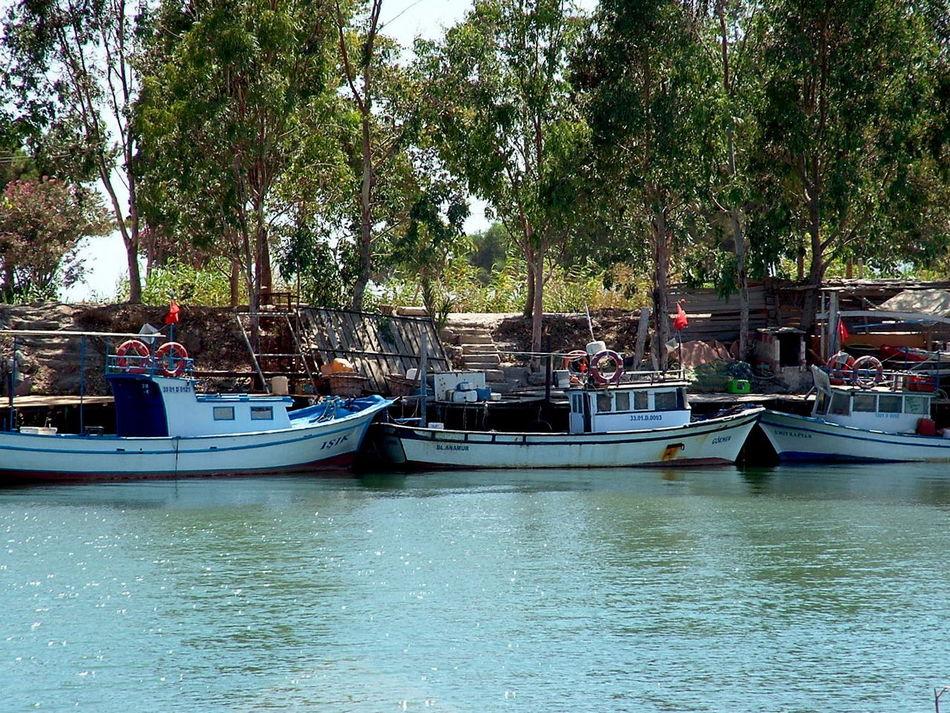 070717 Anamur Bridges Dragon çayı Fisherman Galpay Mersin Turkey