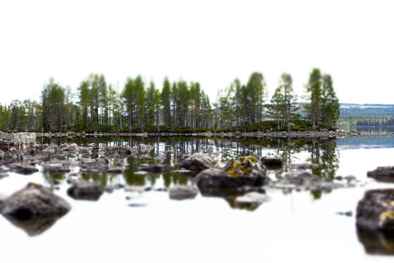 WoodLand Landscapephotography Landscape_captures Landscape_lovers Landscape Photography Landscapes Landscape_photography Landscape Forest Sweden Planet Earth Nature Outdoors Lake Miniatureeffect Water