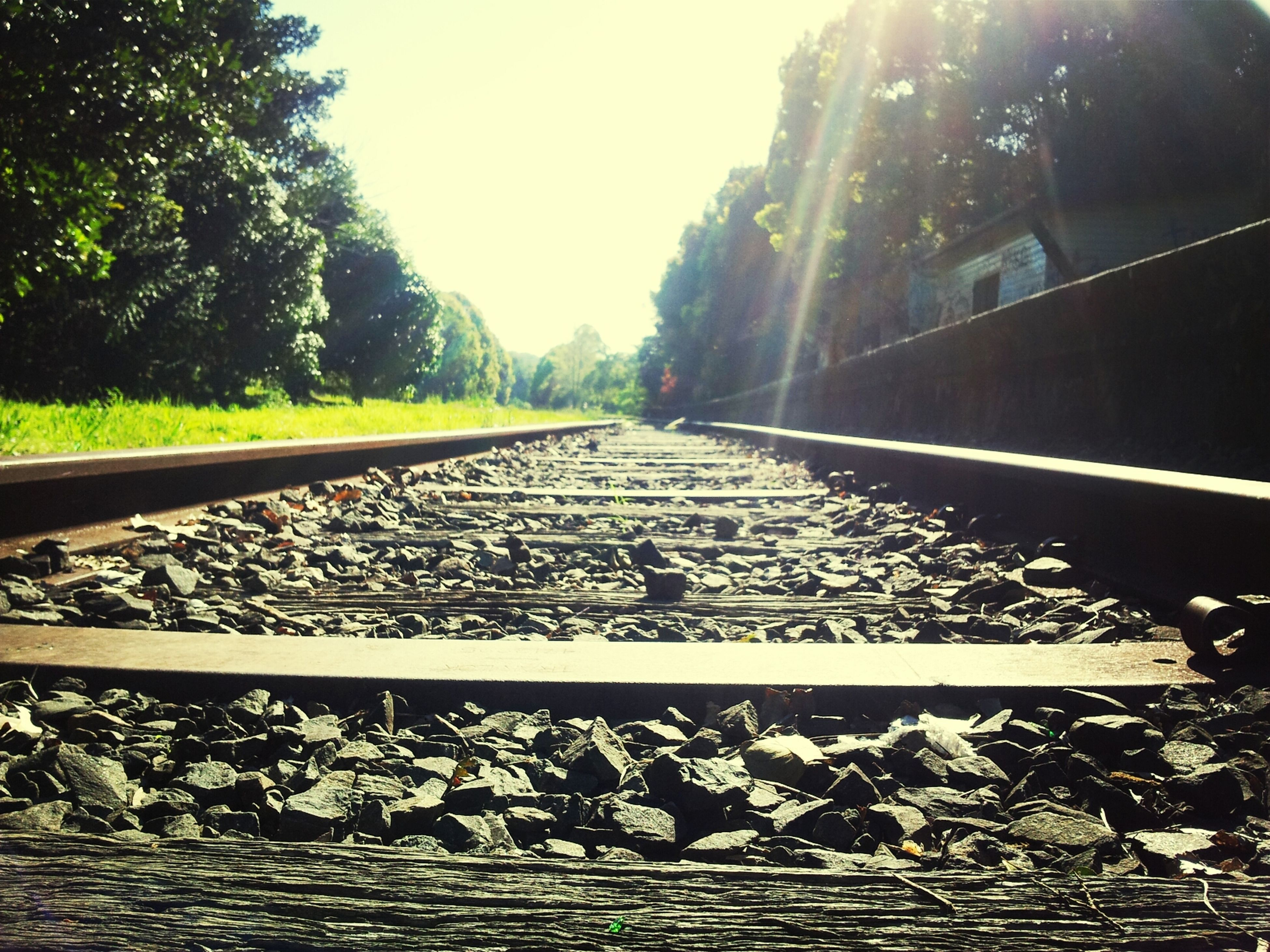 railroad track, the way forward, transportation, diminishing perspective, vanishing point, rail transportation, tree, clear sky, surface level, railway track, sunlight, sky, day, long, outdoors, railing, metal, straight, no people, built structure