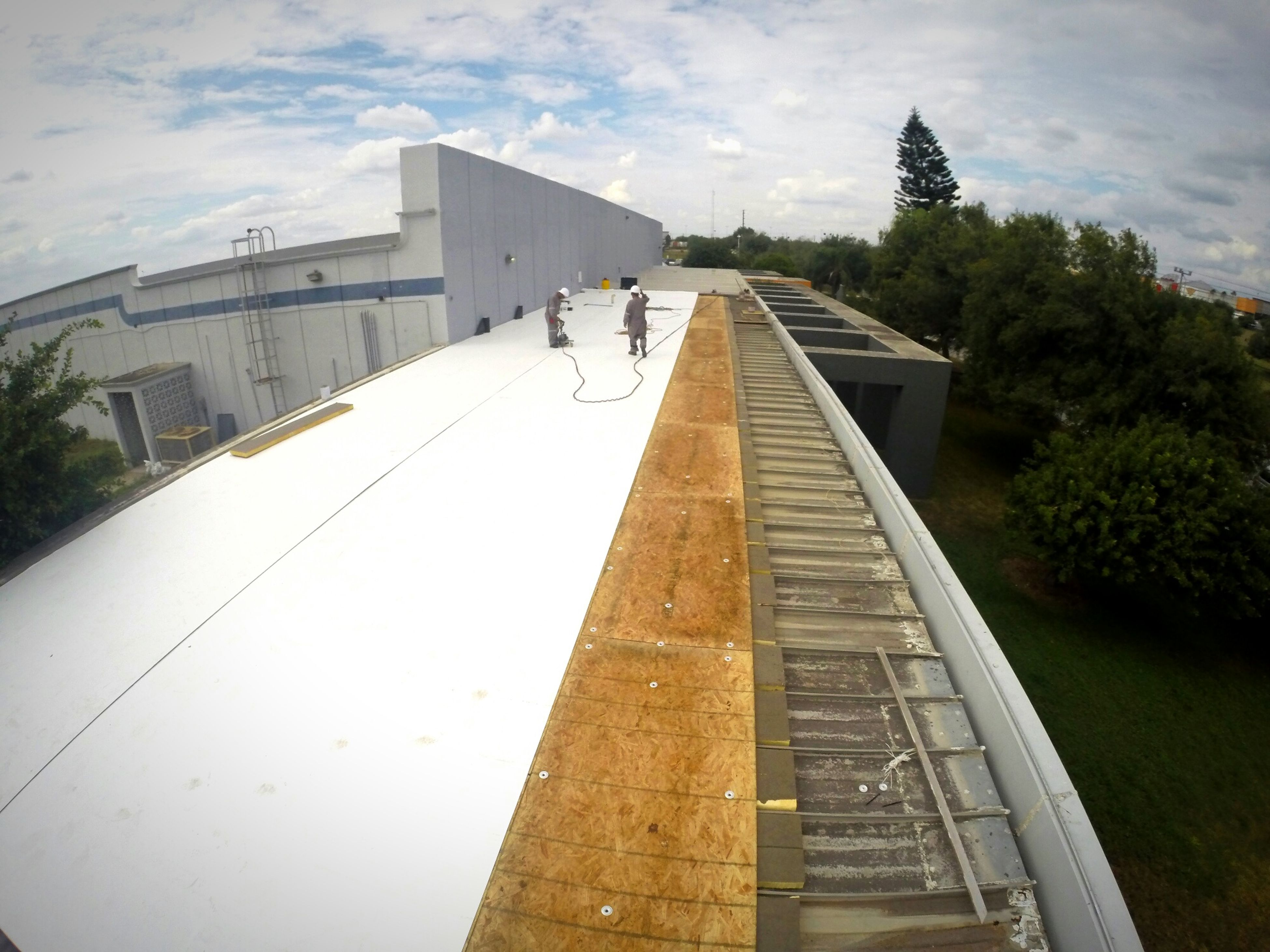 Gopro GoPro Hero3+ Roof Working Hard Work Trees Sky And Clouds OnTop Photography Industrial Industry Industrialservices Service Industrial Area Wood Membrane Whitemembrane