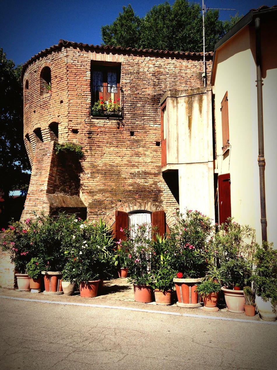 Castelguelfo Torre Vecchiemura Emiliaromagna Citta` Vecchia