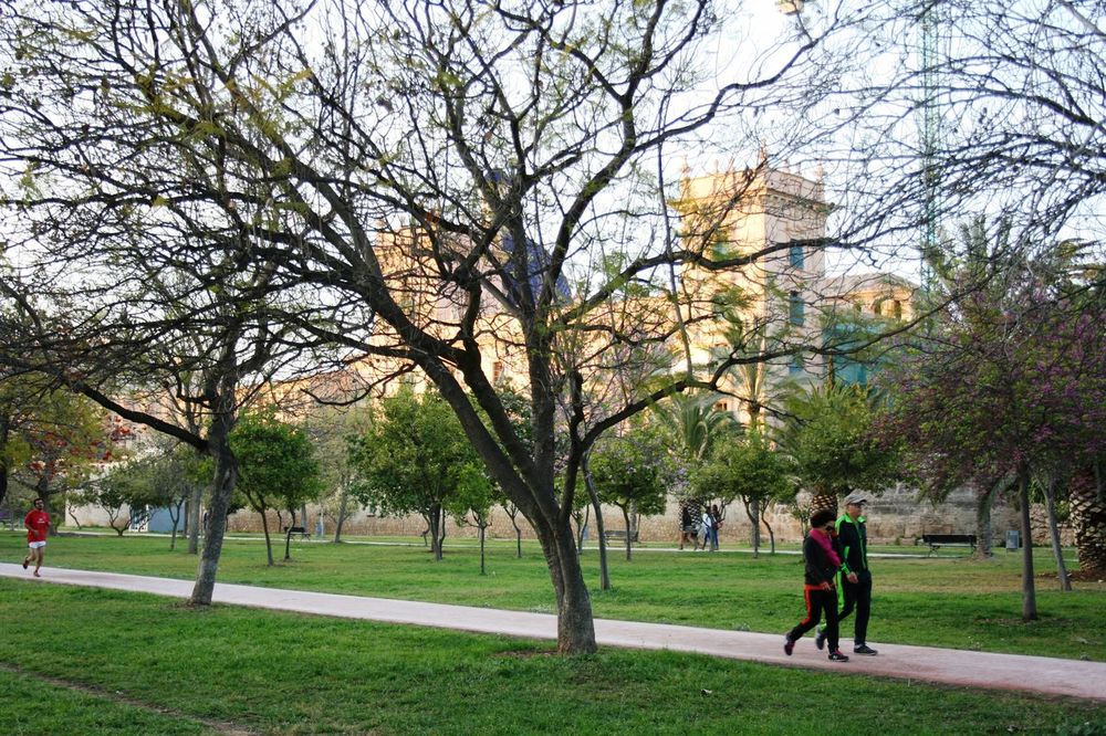 03/2016 Couple Walking Old Architecture Spanish Spring Spring In The City Urban Paradise Urban Park Urban Sports Urban Spring Fever Walking
