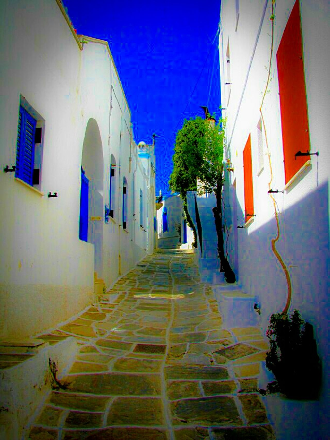 Q Quiet Places Alley Houses Windows Showcase March Lefkes Village Paros Island Coloured Windows Peace And Quiet Tranquility Tranquil Scene A Moment Of Zen... Greek Islands No People Summer Memories 🌄 Greece Summer Views Pastel Power Street Photography Blue Wave