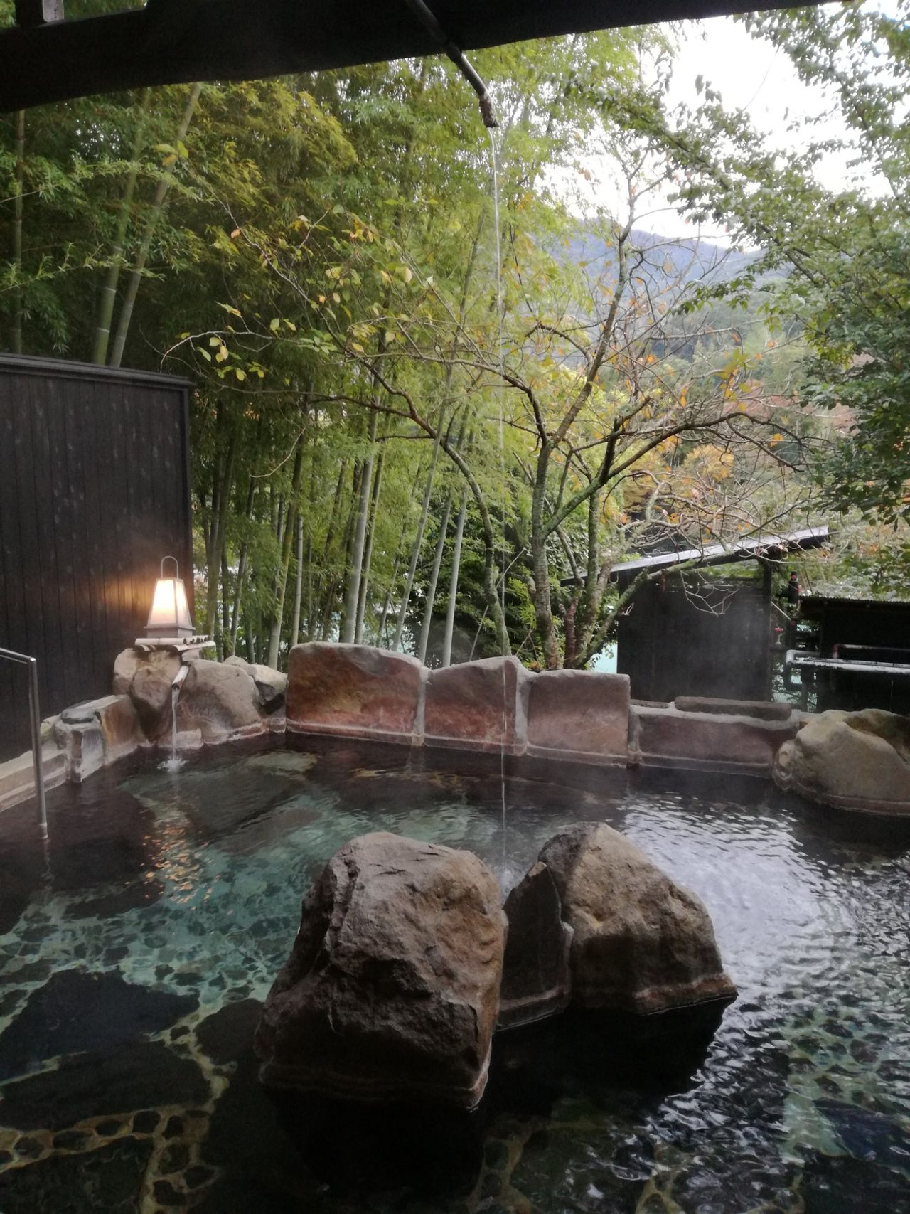 Tree Water Reflection Nature No People Tranquility Growth Tranquil Scene Outdoors Beauty In Nature Day Sky Onsen Rotenburo Yugawara Secret Place Travel Nature Forest
