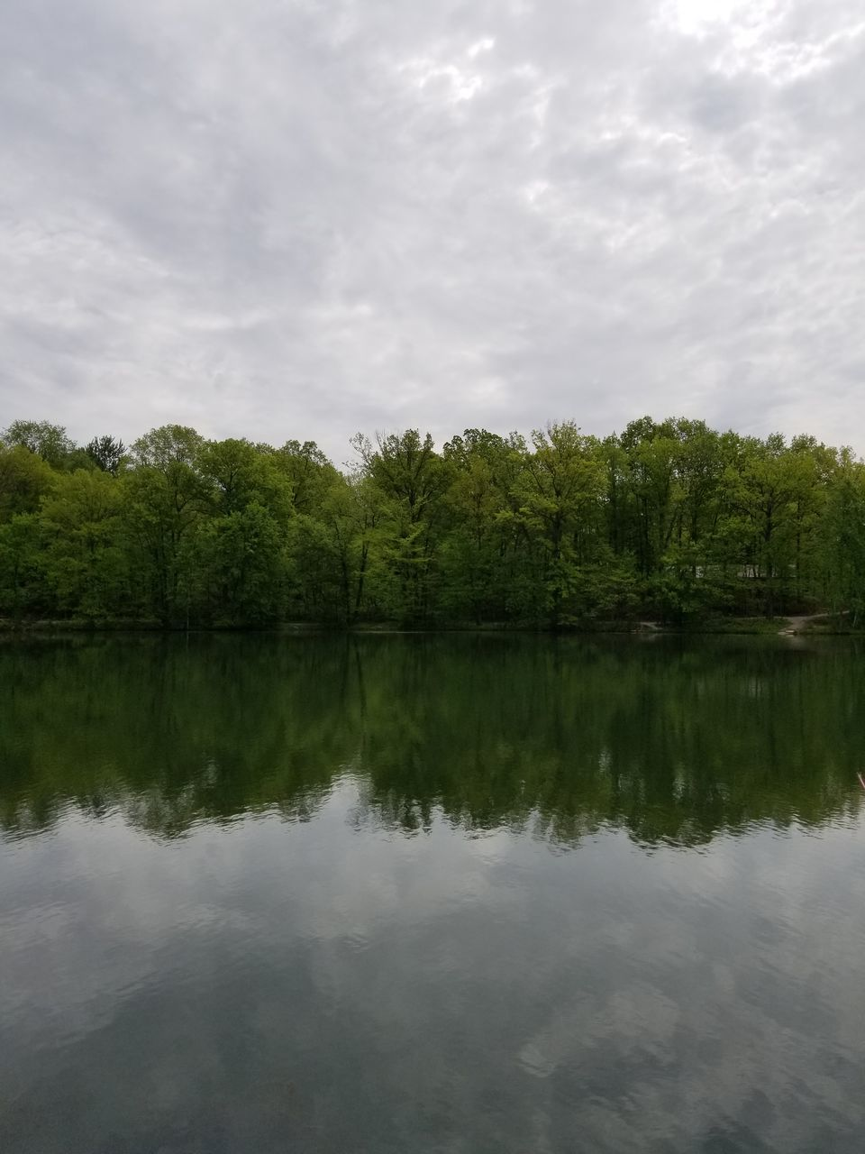 reflection, water, tree, lake, nature, tranquility, beauty in nature, tranquil scene, day, sky, no people, outdoors, cloud - sky, scenics, green color, waterfront, growth, forest