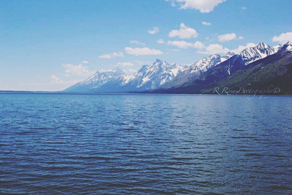Grandtetons Yellowstone Wyoming Roadtrip7states Summerviews