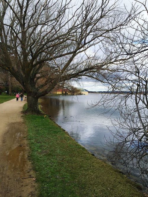 Lake side path. Bare Tree Water Tree Branch Tranquility Tranquil Scene Lake Travel Destinations Scenics Tree Trunk Tourism Non-urban Scene Lakeshore Nature Day Footpath Beauty In Nature Riverbank Distant