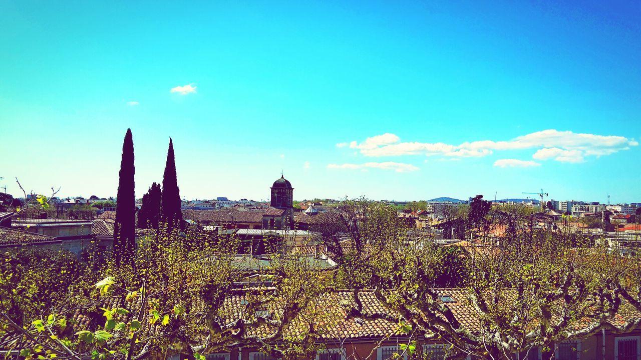 Montpellier Citylandscape Colorfull Light Blue Sky City