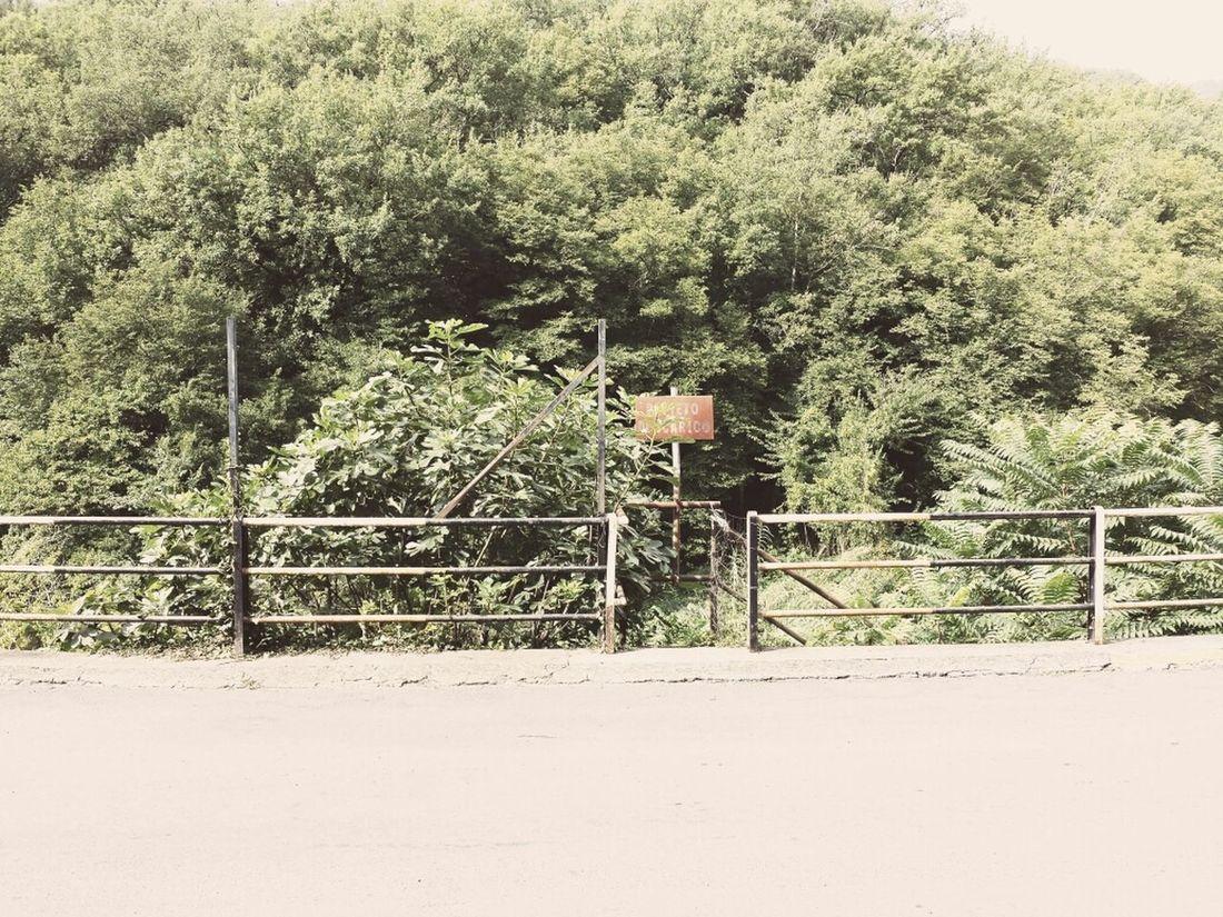 On The Road Summer Journey Landscape