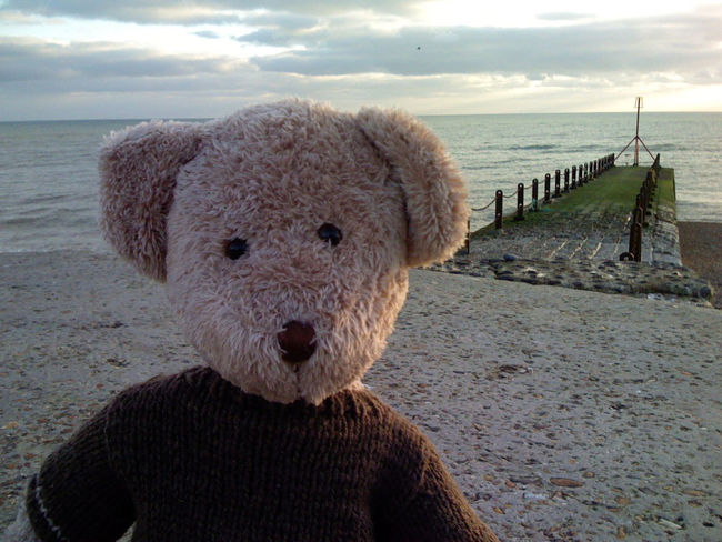Beach Beauty In Nature Close-up Cloud Cloud - Sky Cloudy Coastline Day Horizon Over Water Idyllic Nature No People Ocean Outdoors Remote Scenics Sea Shore Sky Teddy Teddybear Teddylove Tranquil Scene Tranquility Water