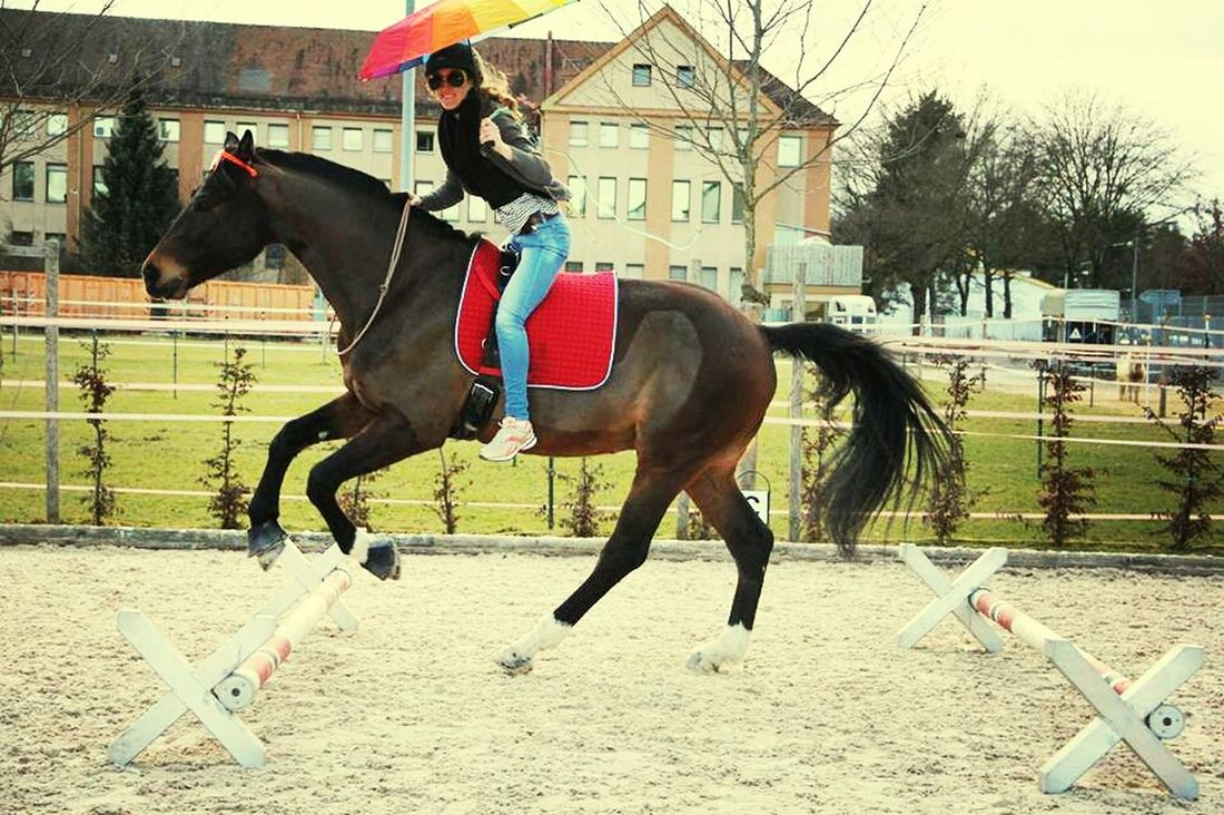 Tiere♡ Riding My Horse Love♥