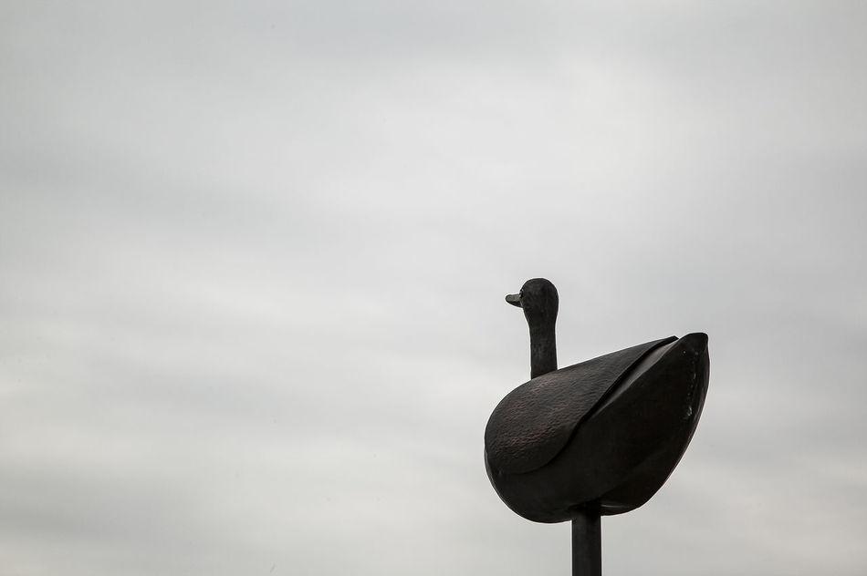 Naksan Park Haewhadong Duck Seoul Korea Black And White Sky