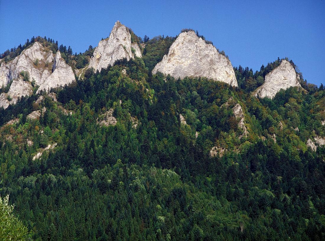 Beauty In Nature Day National Park Outdoors Pieninski National Park Pieniny Pieniński Poland Polen Rock Formation Trzy Korony Trzy Korony Poland