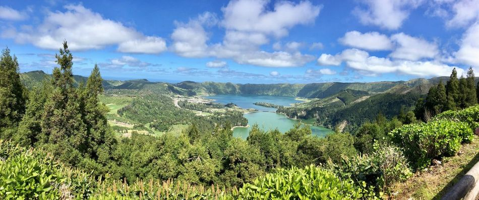 Azoren Vulkankrater Insel Berge Wald Sao Miguel-Azores São Miguel - Açores São Miguel - Açores Mar Portugal Landsl Vulkan Vulkaninsel Bergsee See Sea