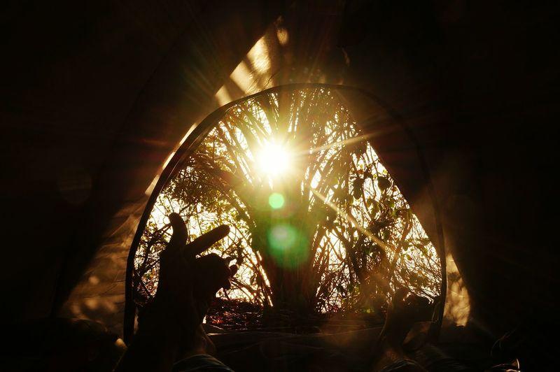 Close-up Day Illuminated Sunlight Sun Beach Camping Camping Trip First Eyeem Photo Nature Sea