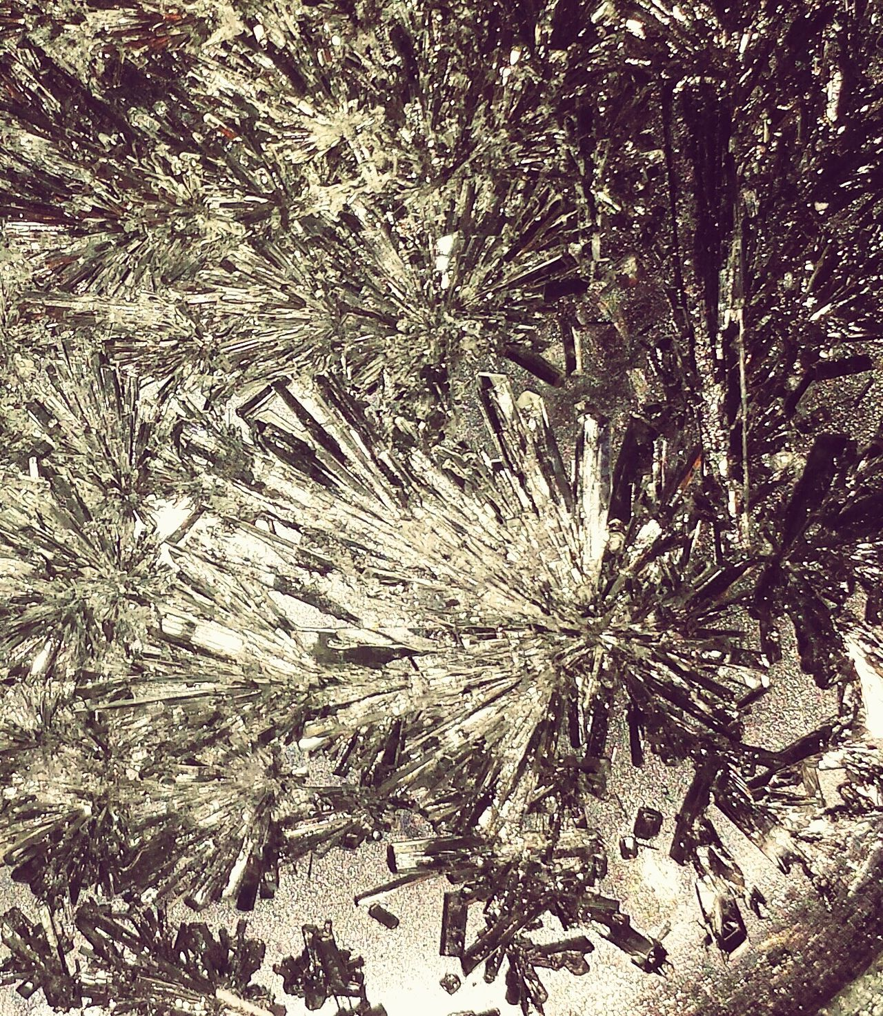 Crystals Forming Crystals Experimental Photography Experimental Messing Around Sparkle Glittery Taking Photos Peace And Quiet Eye4photography  Beaytifulinnature Beauty In Nature Eyem Collection No People Eyem Gallery Eyem Best Shots Eyemcaptured Bling