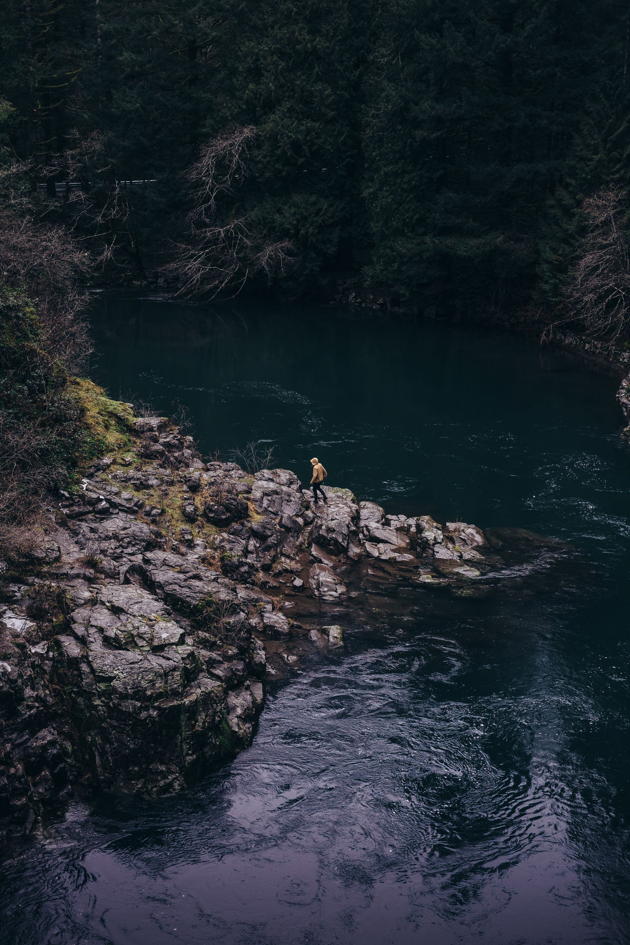 Adventure Nature Beauty In Nature Outdoors Scenics Water Travel Destinations Travel River Tranquil Scene PNW One Person Tourism Moody One Man Only Moultonfalls Washington State Lone Miles Away
