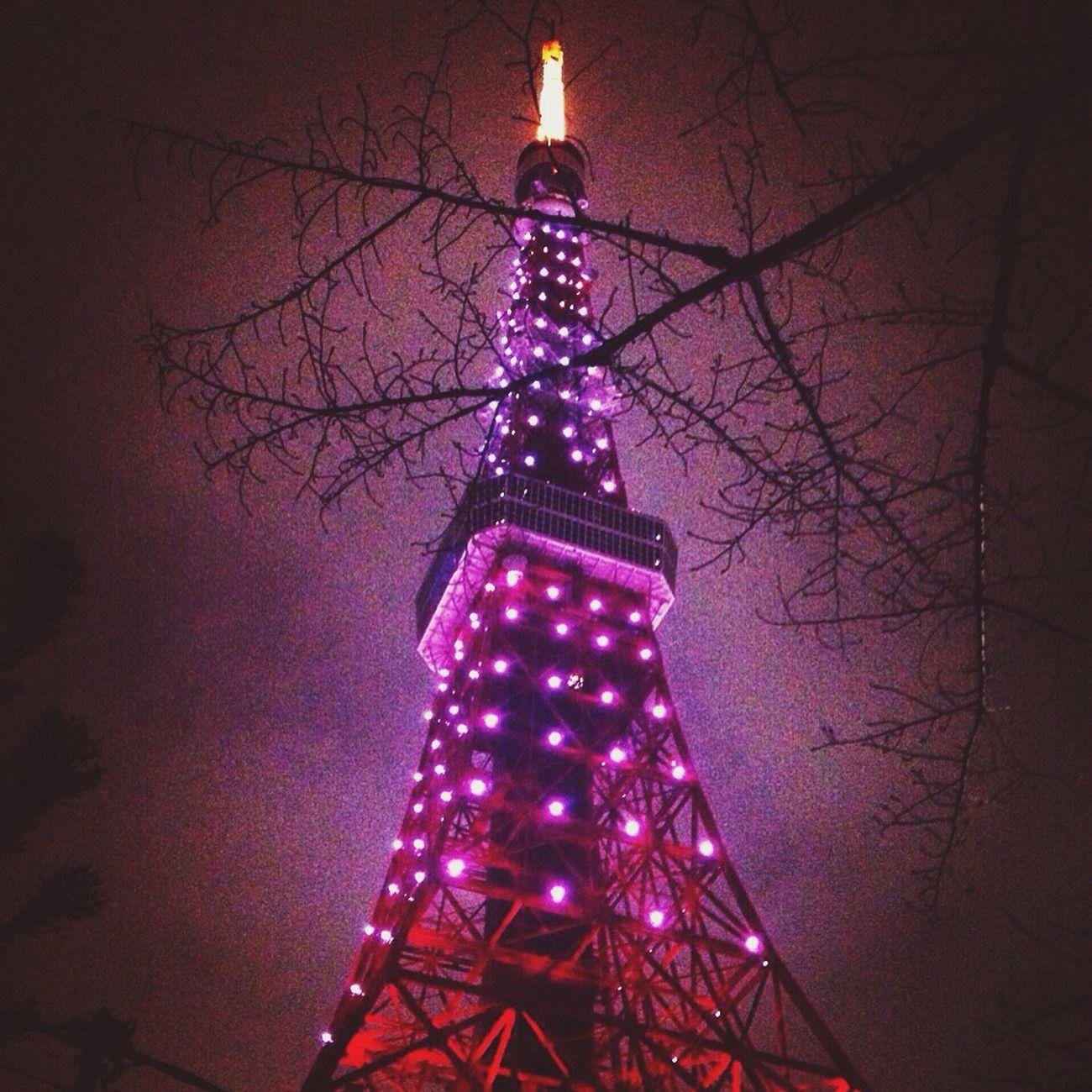 サクラ咲く 東京タワー 応援 がんばれ受験生?光のサクラ咲く?