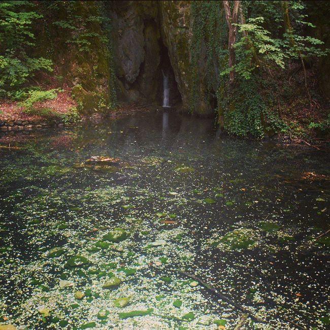 Bükk Nemzetipark Hungary Mik nature lake szilvasvarad szalajka