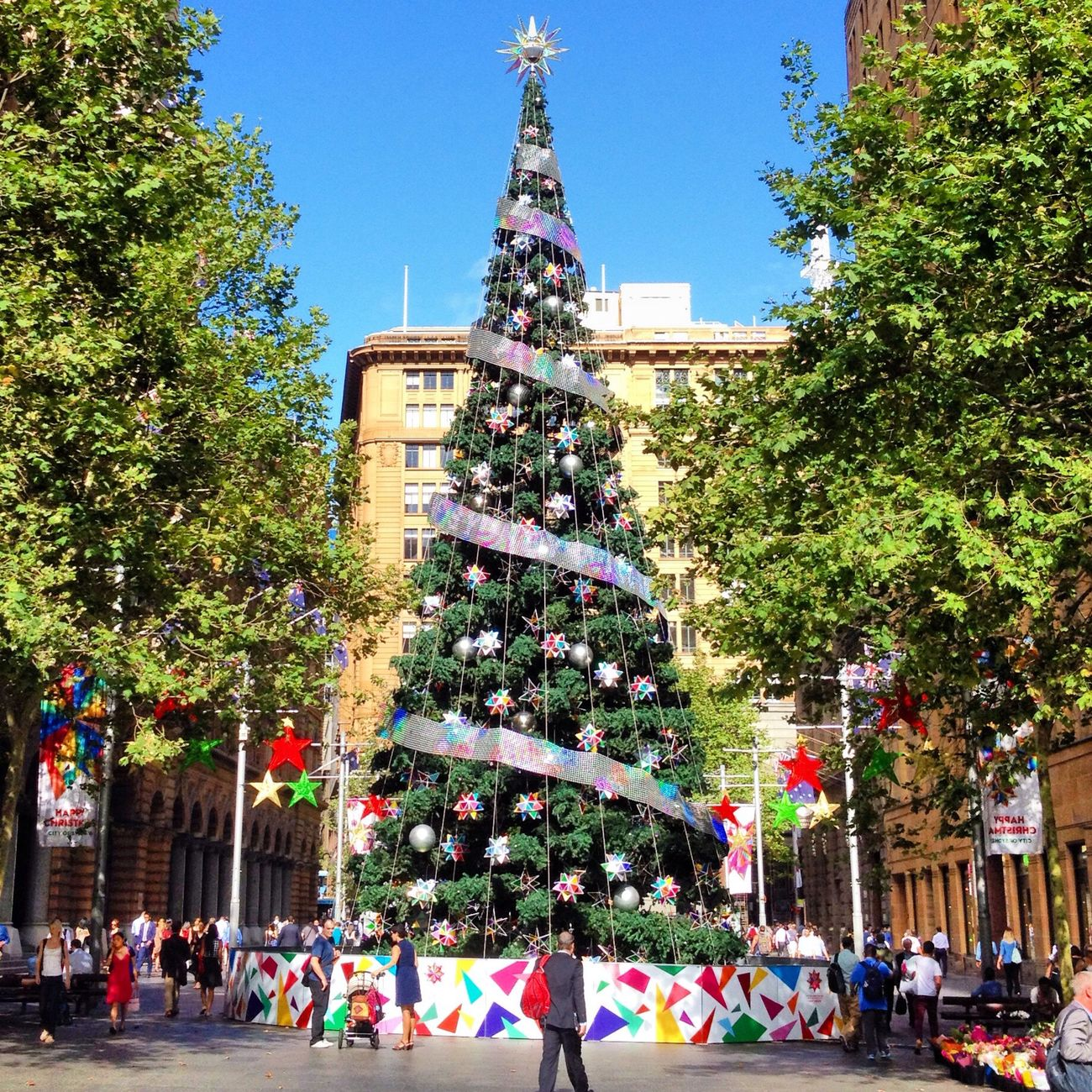 Fmsphotoaday 2013 | 12.17 & 12.18 | Tree & Big | Big tree in Martin Place! | #fmsphotoaday #latergram #nofilter #christmas #tree #sydney #iphoneography #iphoneonly #igerssydney |