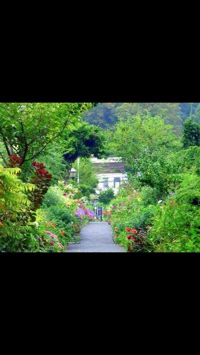 Bridge Of Flowers Flowers