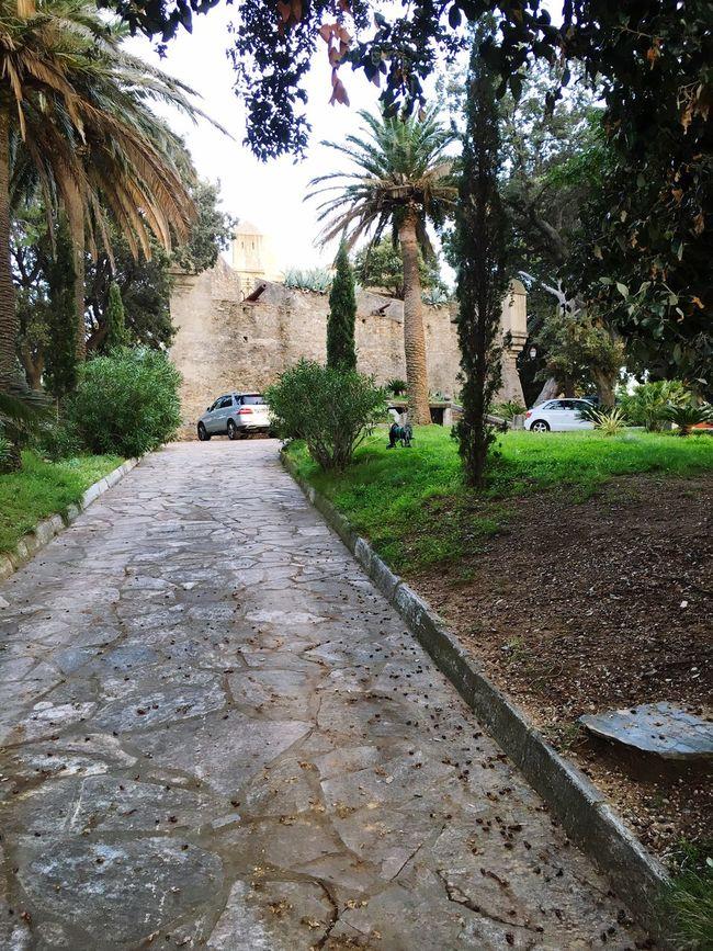 Château Muraille Canon Corse Corsica Pictures