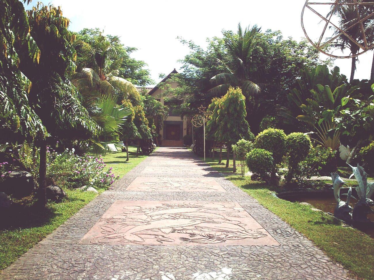 050815 Sumpaguita Garden Kalibo Aklan