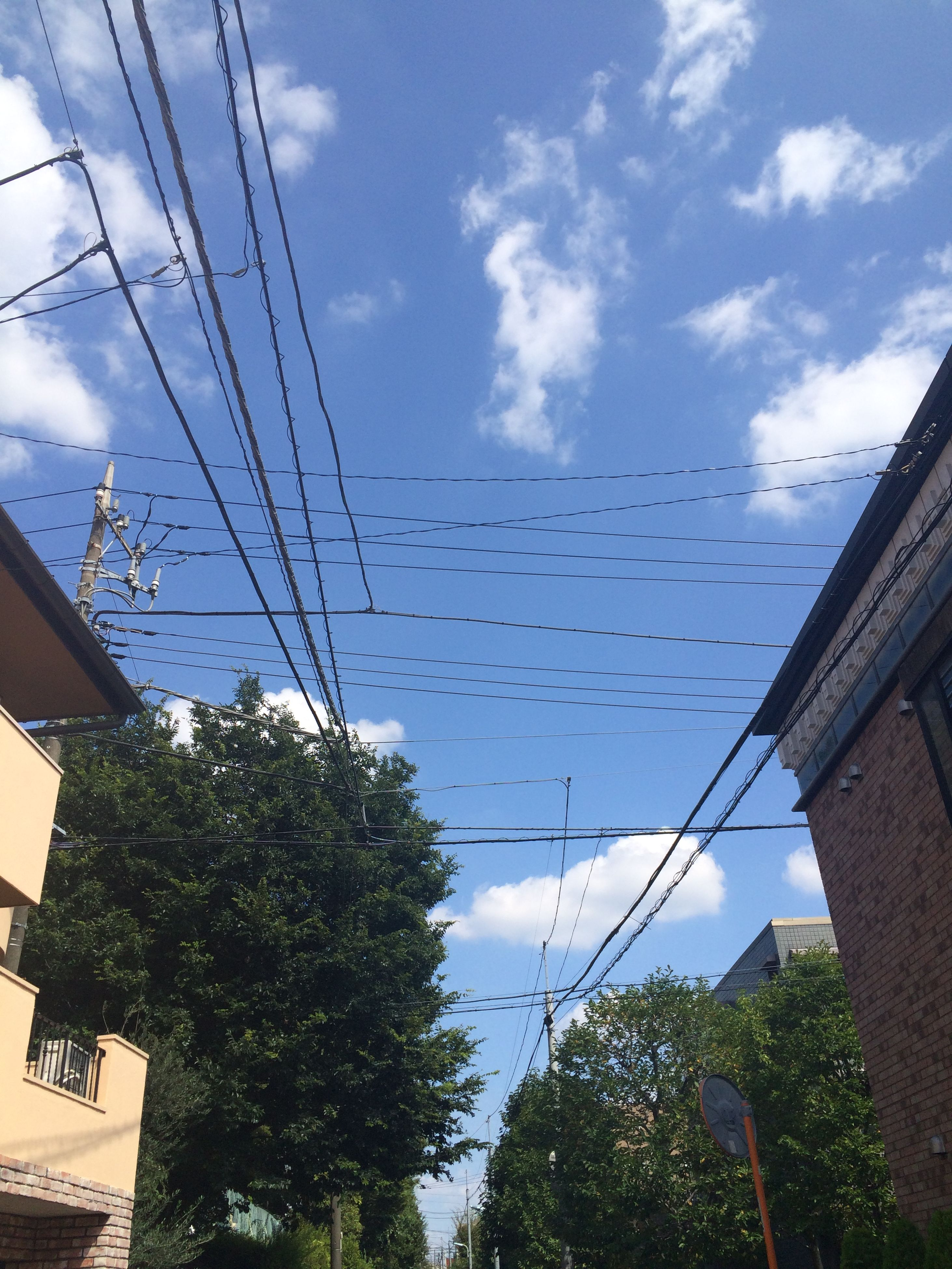 low angle view, sky, built structure, architecture, building exterior, power line, cable, tree, blue, cloud, cloud - sky, day, house, electricity, connection, roof, outdoors, hanging, building, no people