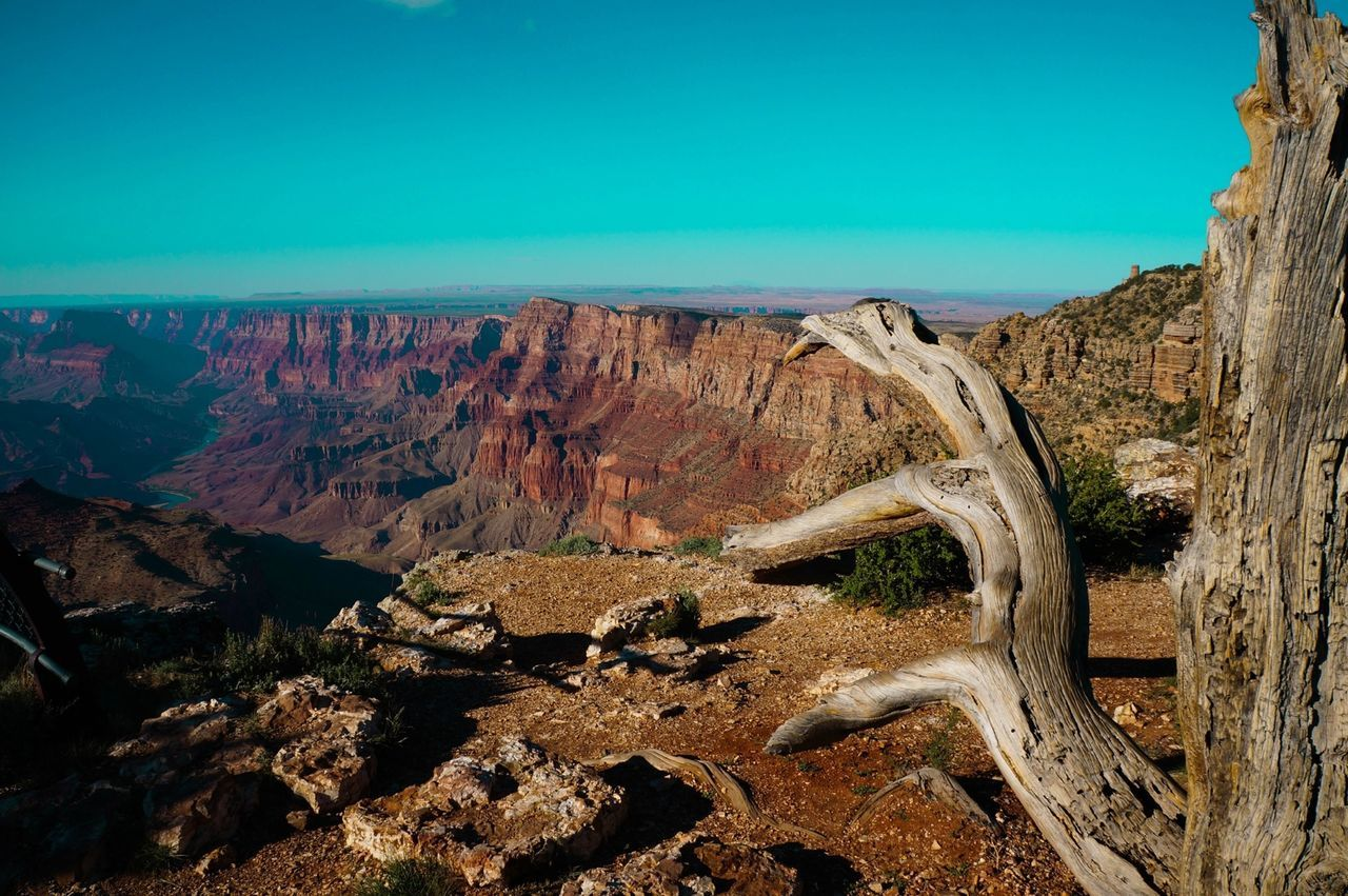 Beautiful stock photos of grand canyon, Arid, Beauty In Nature, Cliff, Copy Space