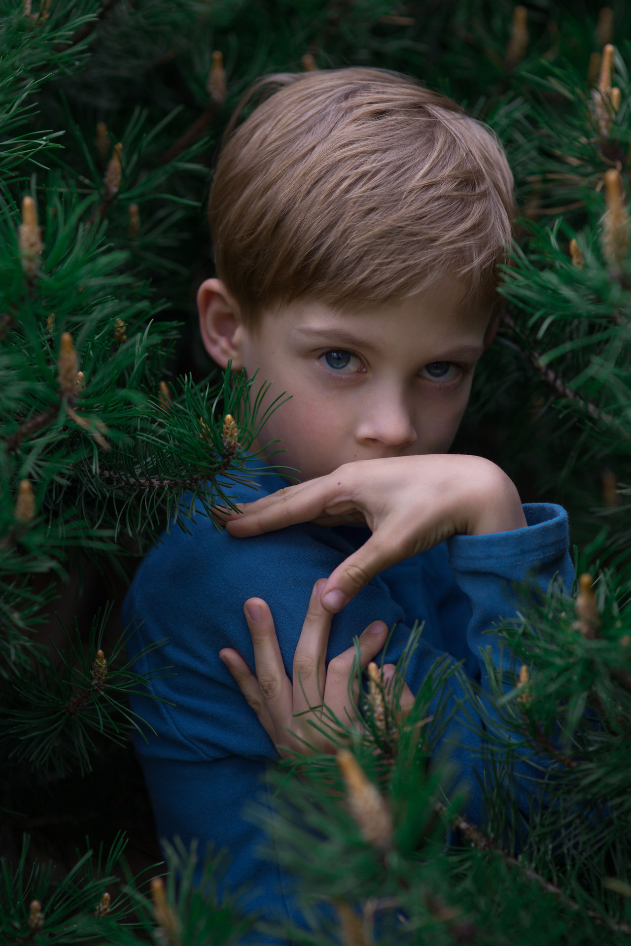 Blond Hair Boys Childhood Close-up Day Elementary Age Grass Green Color Human Hand Nature One Boy Only One Person Outdoors Plant Real People The Portraitist - 2017 EyeEm Awards Tree