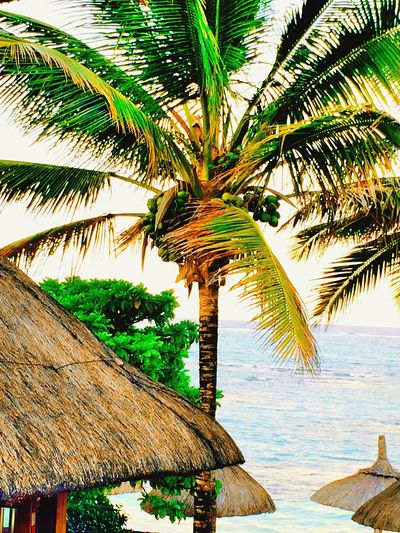 Relaxing Enjoying Life Beautiful View Enjoying The View Peaceful Sea And Sky ☁️