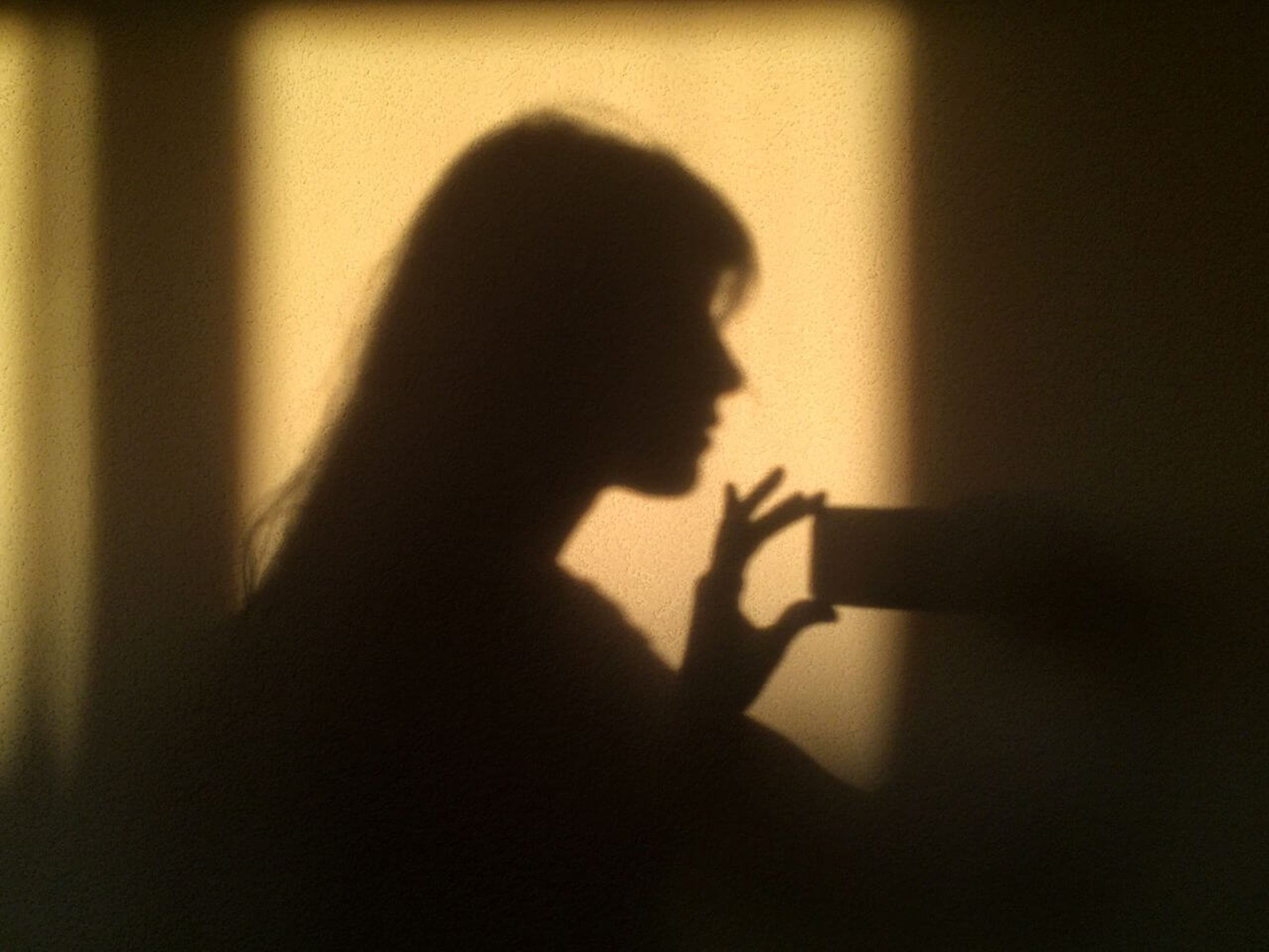 shadow, focus on shadow, indoors, silhouette, one person, sunlight, home interior, real people, women, lifestyles, day, human hand, adult, people