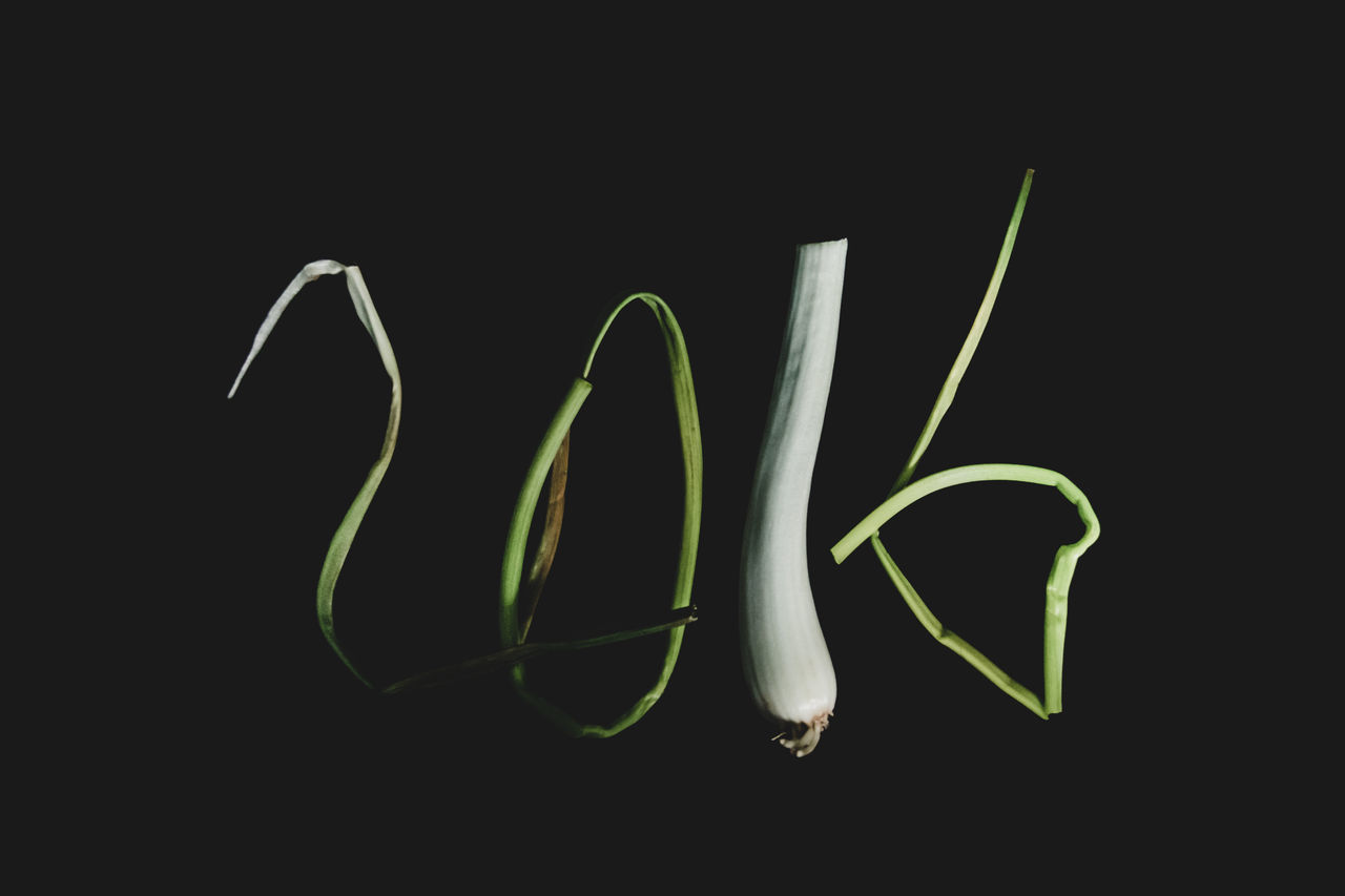 Welcome 2016 First Eyeem Photo - 2016 Happy New Year 2016 New Year Around The World Vegetables Getting Inspired Getting Creative Minimalobsession Learn & Shoot: Leading Lines Minimalism Showcase: January Light And Shadow Darkness And Light Desks From Above Beautifully Organized Inspirational Overhead View Food Still Life Abstract Simple Things In Life Food Art Things Organized Neatly Fine Art