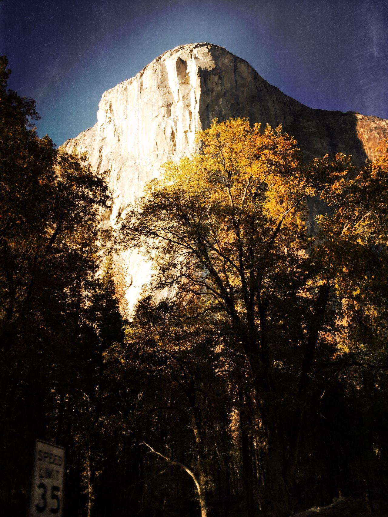 Yosemite National Park El Capitan California