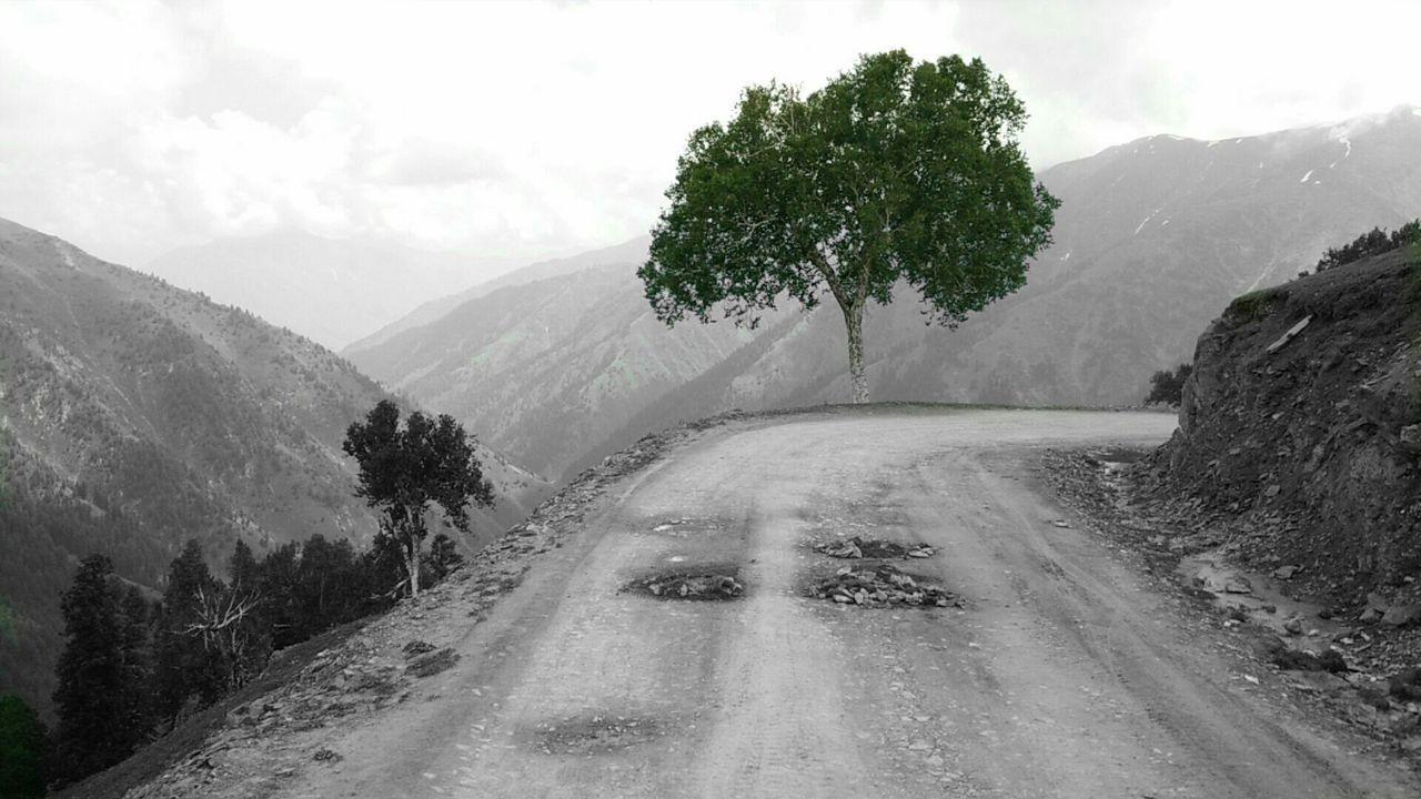 The Adventurer - 2015 EyeEm Awards The Traveler - 2015 EyeEm Awards The Great Outdoors - 2015 EyeEm Awards Edge Of The World Getting Inspired Hugging A Tree TreePorn Travelling Capturing Freedom The Photojournalist - 2015 EyeEm Awards Miles Away