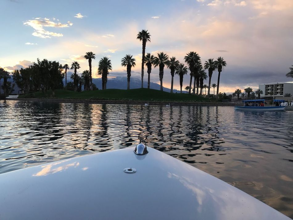 Palm Desert, CA Boat Boat Ride Dusk Colours Waterfront Calmness Sunset Palm Tree Silhouette Palm Trees Water And Sky Water And Sky Collection