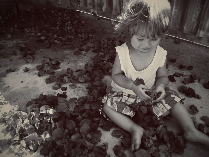 Sepia, flower, petals, boy, baby, pure, peace, kindness, love, wonder, first year, maternity, mom, best, happy, inspire, zen, inocent, red, nature, in bloom, vsco, blossom, lovely, cute Childhood Child Children Only Elementary Age Sitting Real People Day Playing Backgrounds Happiness Babies Only Smiling Tree