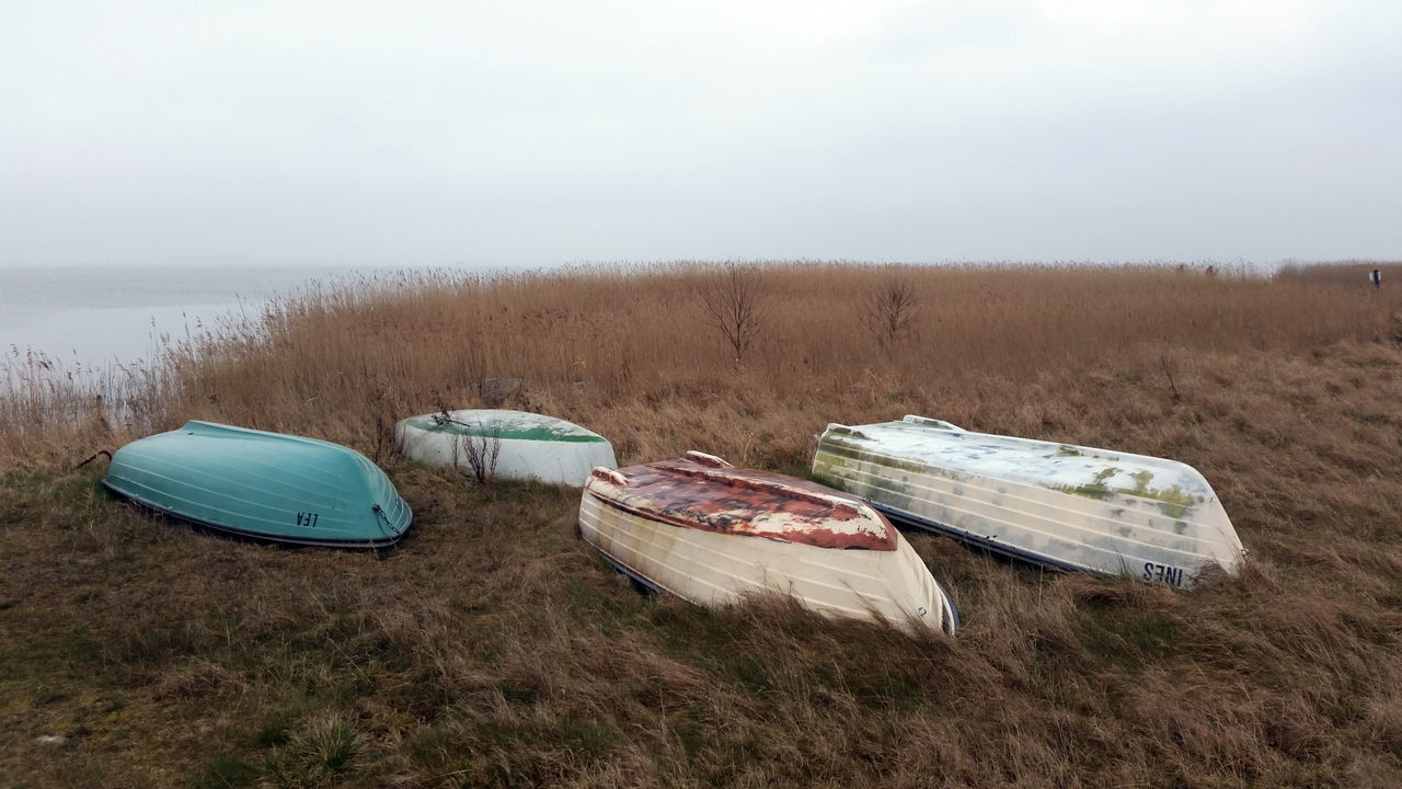 fishing boats Boats Day Fishing Boats Germany Grass Hiddensee Nature Neuendorf Outdoors Sea Shore Sky Water