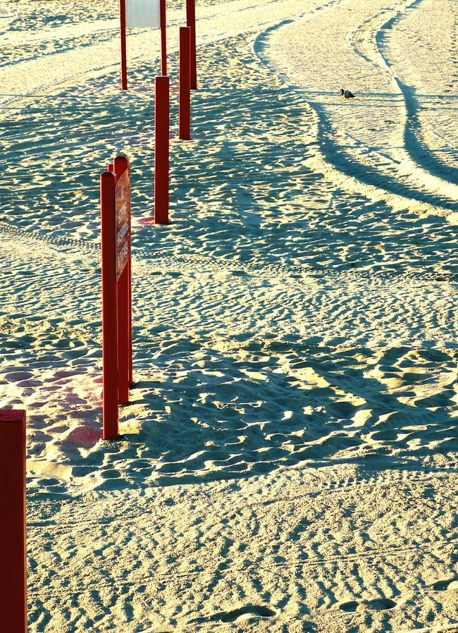 Posted. Beach Sand Tracks Dawn Beachphotography Shore Florida Signs Quiet Footprints