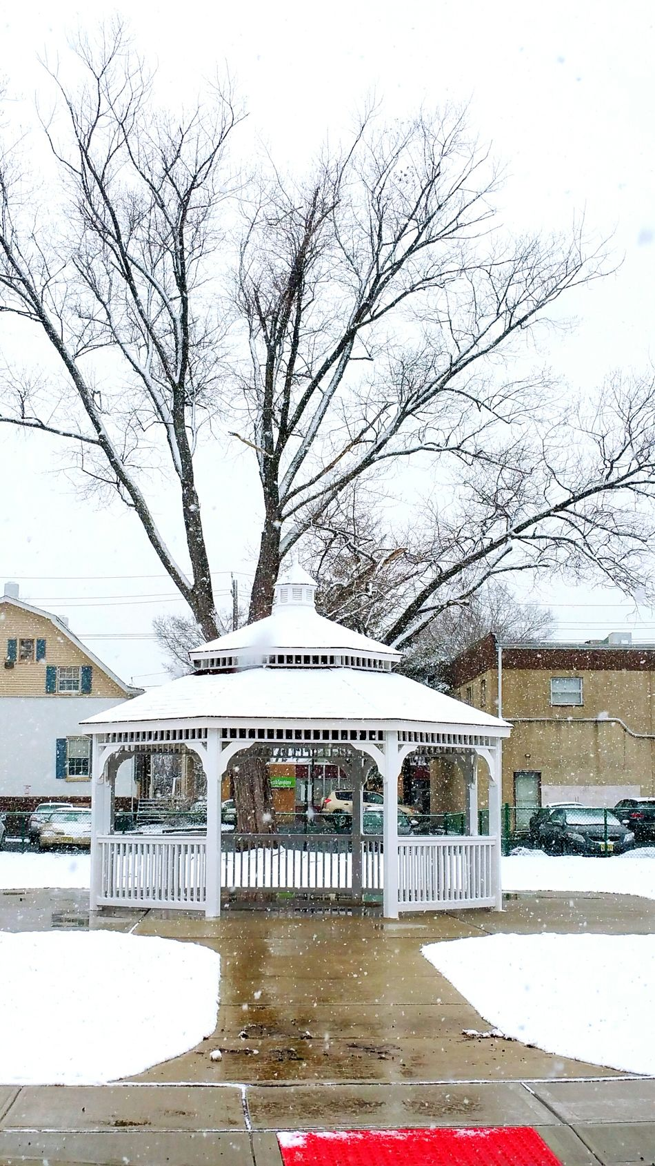 Fair Lawn, First Day Of Spring Fair Lawn Snow Check This Out Popular Photos EyeEm Gallery Nearby Local geometric shape Urban Photography Tree