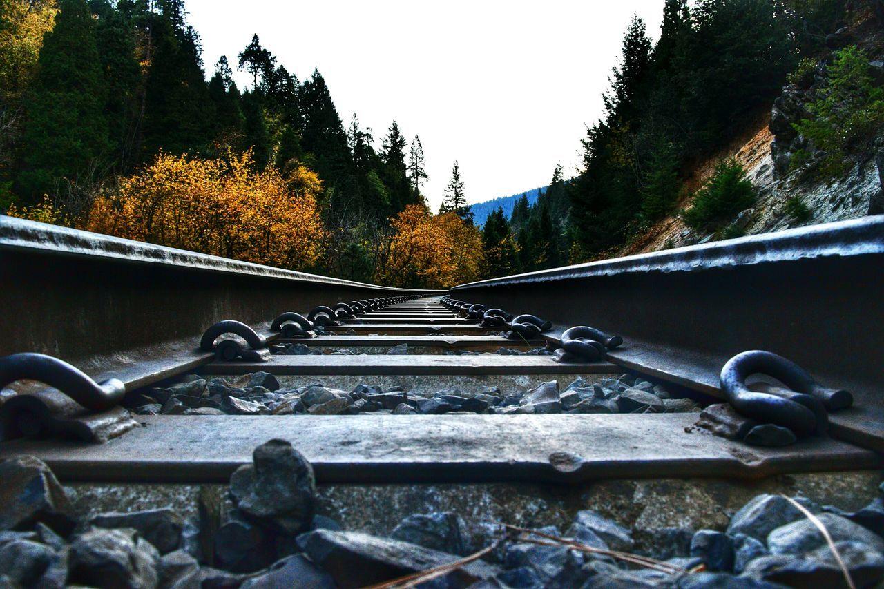 Dunsmuir, CA Railroad Train Train Tracks Autumn Fall Fall Colors Orange Nature Symmetry Hiking Mossbrae
