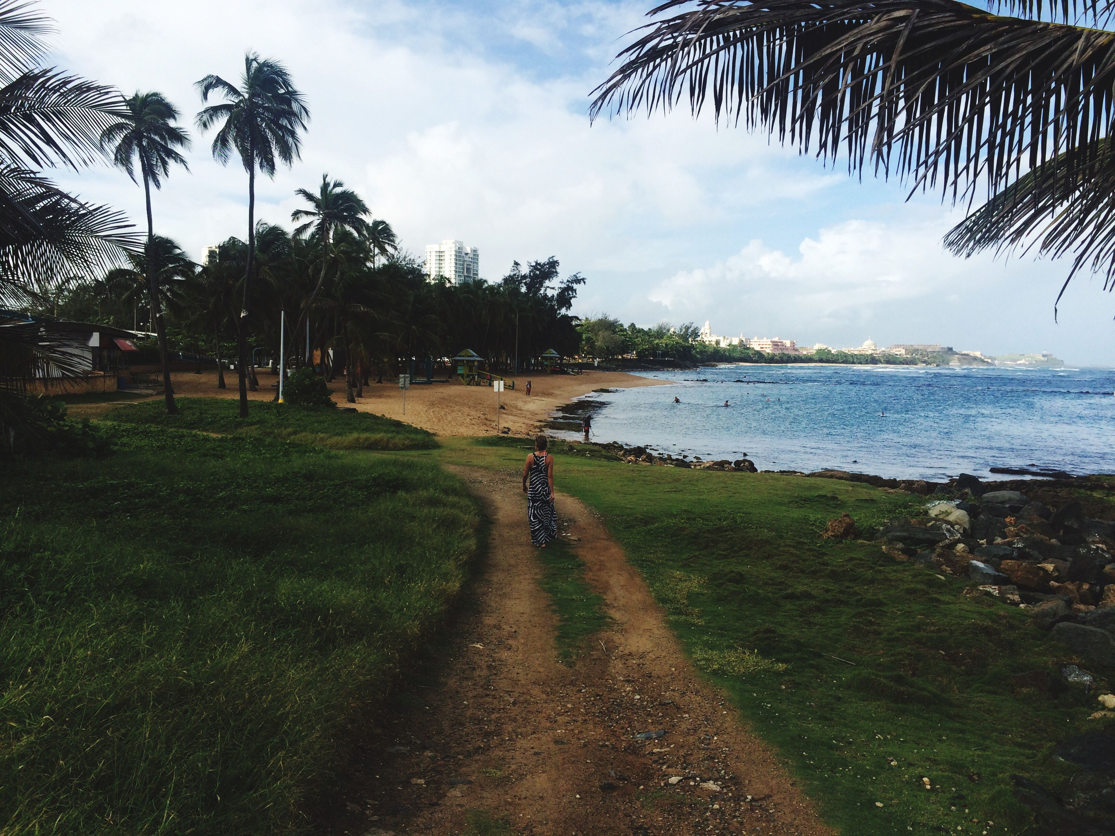 tree, sky, water, sea, palm tree, the way forward, tranquility, tranquil scene, beach, grass, scenics, nature, growth, beauty in nature, footpath, cloud - sky, sand, cloud, shadow, incidental people